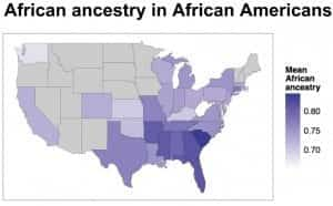 African Ancestry in African Americans