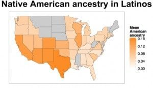 Native American Ancestry in Latinos